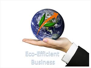 Eco Efficient Business
